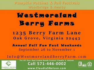 Pumpkin Patches, Fall Festivals in Woodbridge VA & Nearby Westmoreland Berry Farm Oak Grove VA