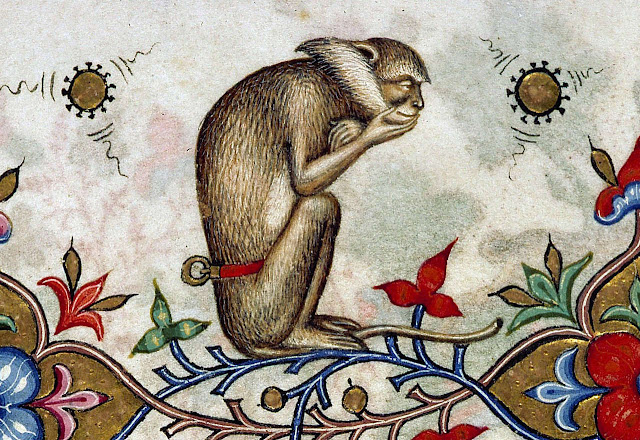 Day in Medieval Europe Thinking Monkey