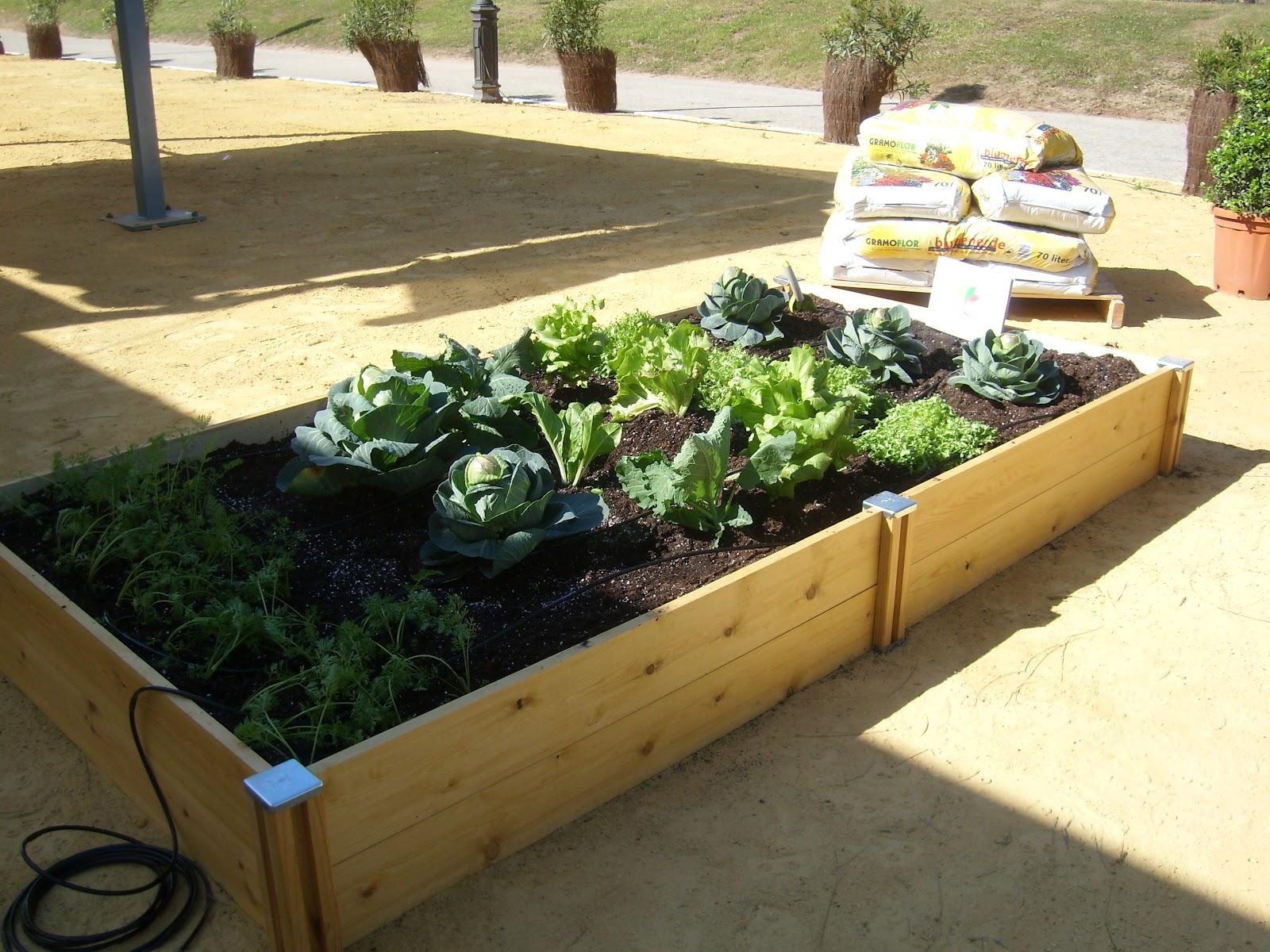 Jardiner a en sevilla caurajard n huerto ecol gico para patios y terrazas - Huerto en casa ikea ...