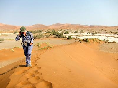 Dunas de Sossusveli  Namibia
