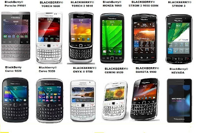 Jenis Jenis Blackberry
