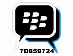 Blackberry Pin