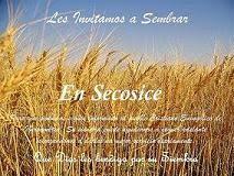 Necesitamos de sus Ofrendas para seguir sirviendoles a todos ustedes en Secosice