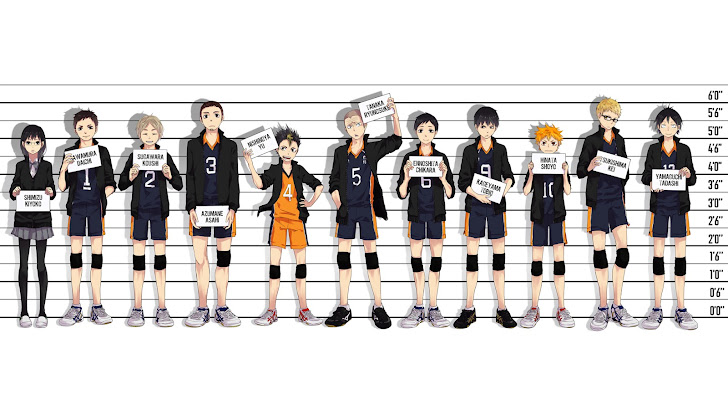 Karasuno High Haikyuu Anime 14