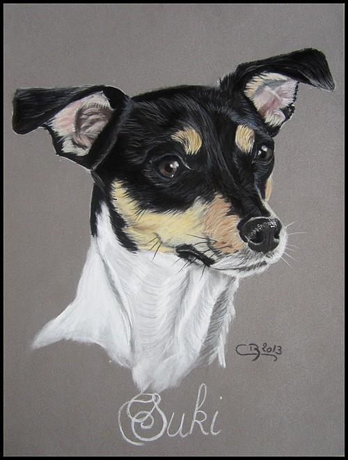 portrait jack russel