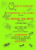 Il Carnevale degli Insetti-Flyer