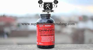 amino carnivor malang murah