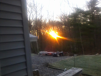 Sun, Central Massachusetts, November