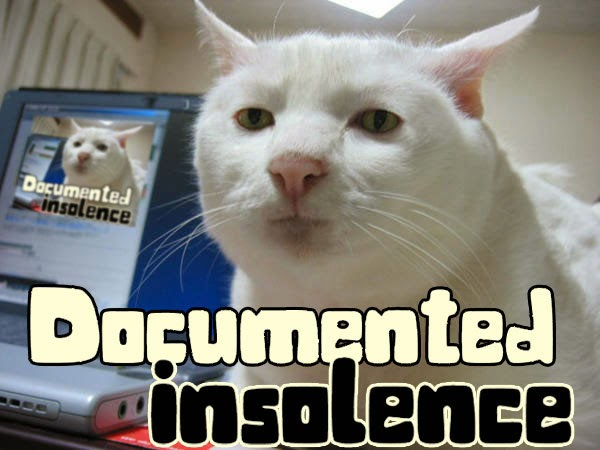 Documented Insolence