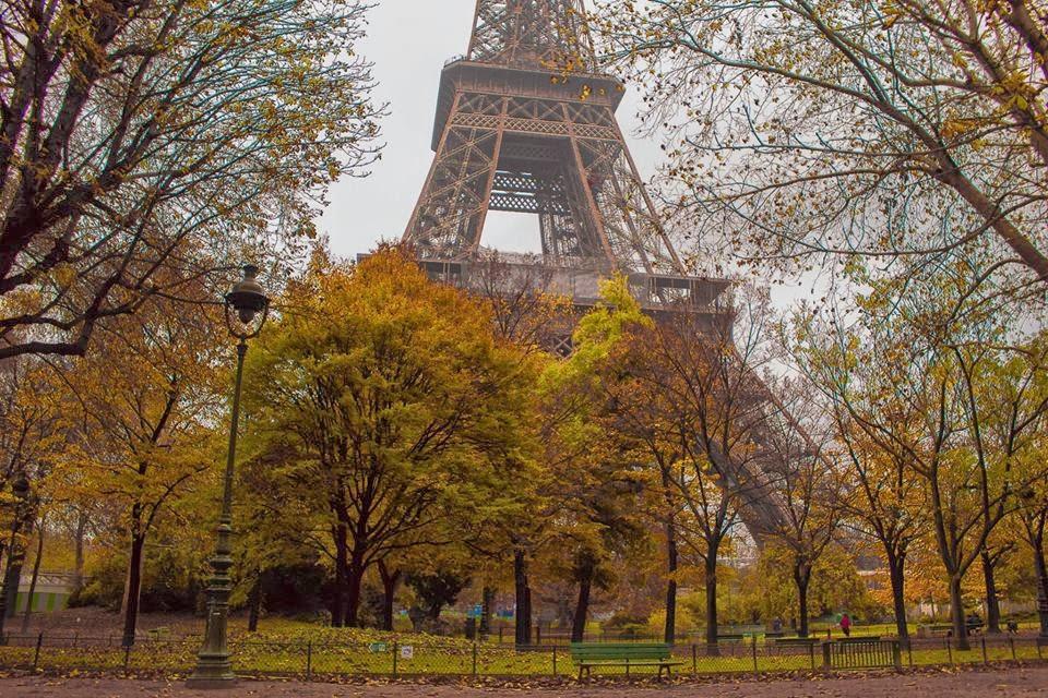 Eiffel Tower Autumn