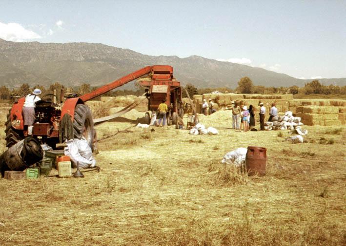 Η αλωνιστική μηχανή ήταν ένα αγροτικό