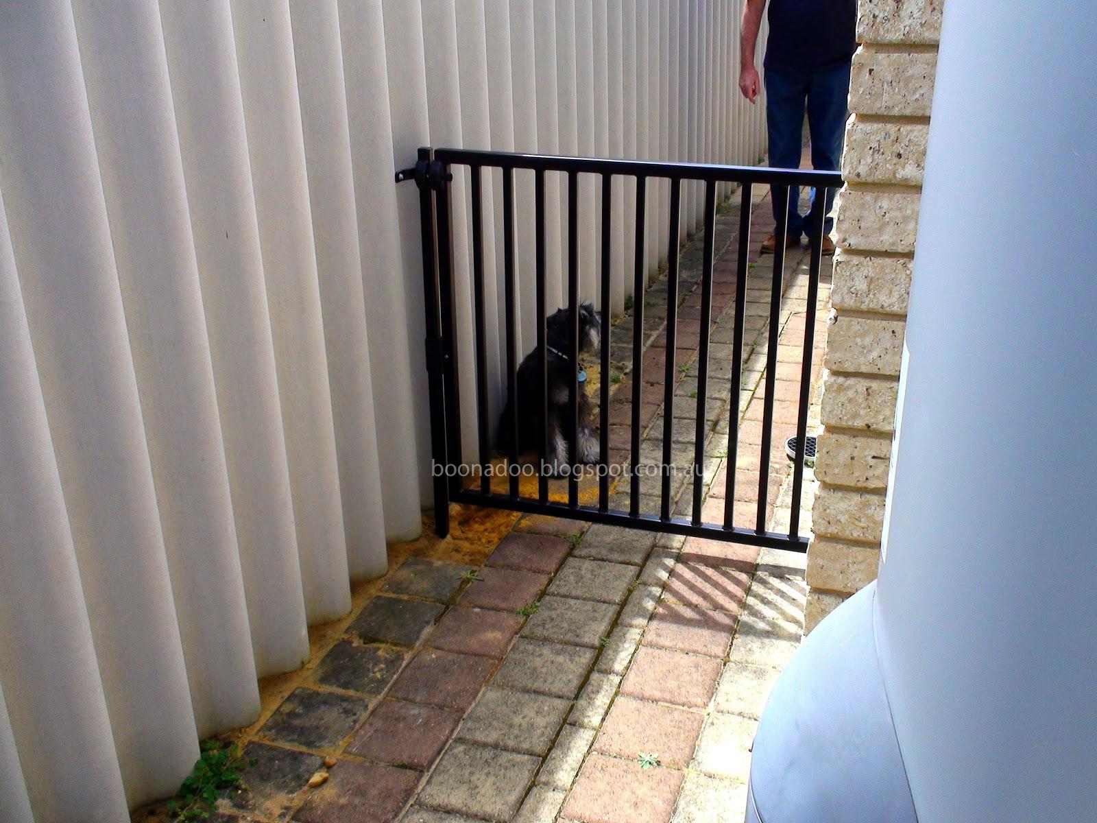 Untitled — Outdoor Dog Gates