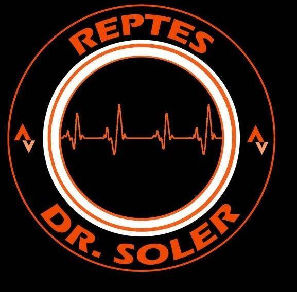 Els reptes del Dr. Soler