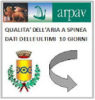 QUALITA' PM10 SPINEA