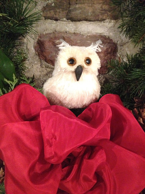owl in the wreath