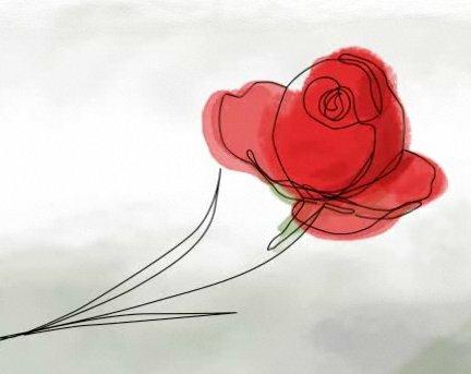 La rosa que nos regaló Siddharta por Sant Jordi