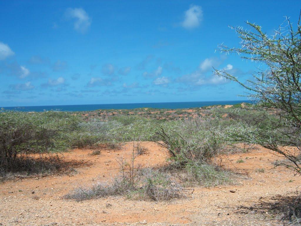Guía de viaje de Somalia