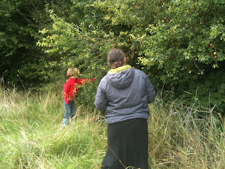 Hedgerow foraging.