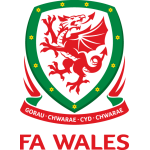 National Footbal Team Logo Wales PNG