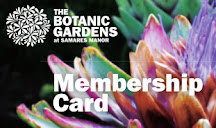 Café discount card for members