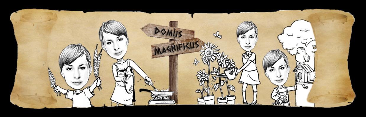 Domus Magnificus