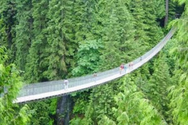 Jembatan Capilano Suspension Bridge