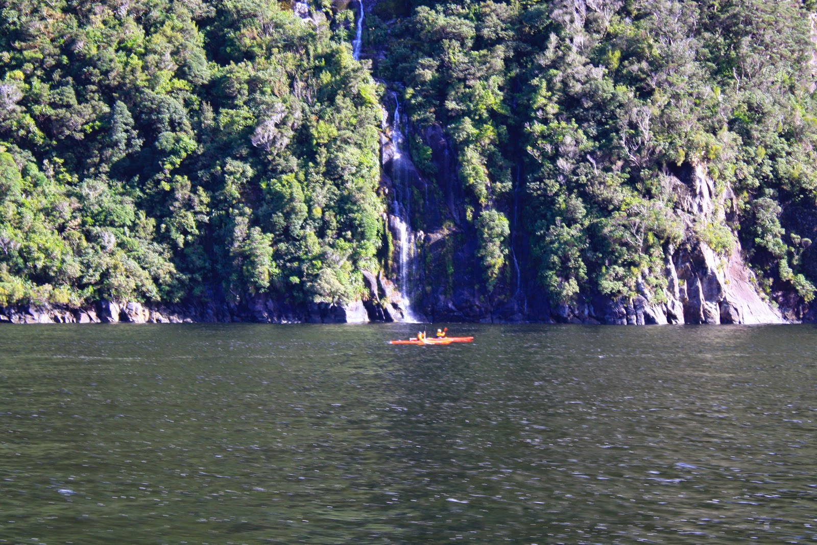 Kayakers in Milford Sound.