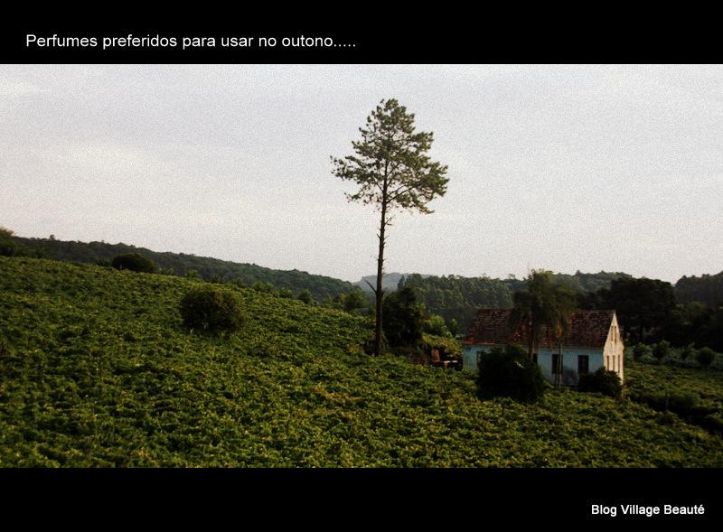 FOTO DO SUL DO BRASIL