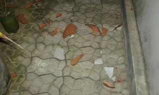 Forte vendaval é registrado no inicio da noite desta sexta (29) no Curimataú