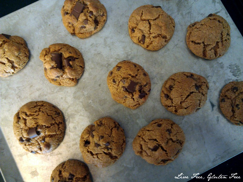 Live Free, Gluten Free: Hazelnut Butter Chocolate Chip Cookies