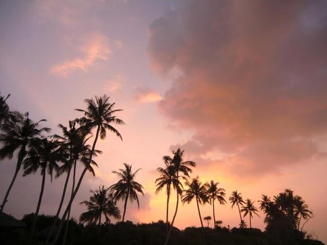 Zakat-Maldivi