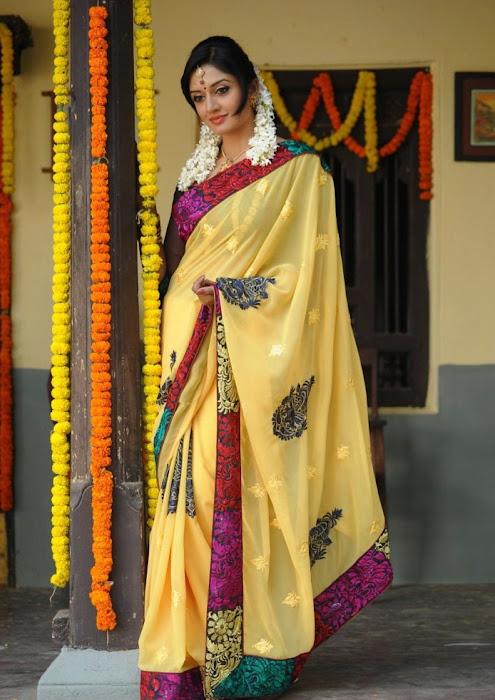 vimalaraman saree hq nowatermark actress pics