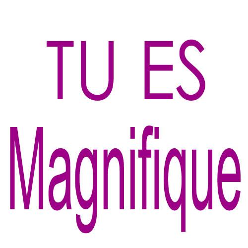 http://3.bp.blogspot.com/-wbgSNJw7_-I/UAVUk53K0aI/AAAAAAAABo0/SrggwBnA_sk/s1600/tuesmagnifique_grand.jpg