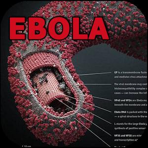 Ebola-App logo