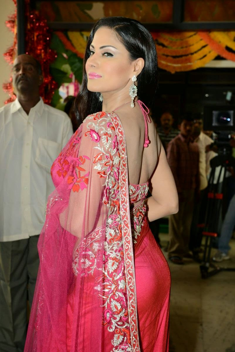 Veena malik in Pink Saree