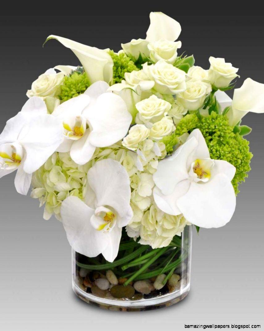 White Orchid Flower Arrangements Amazing Wallpapers