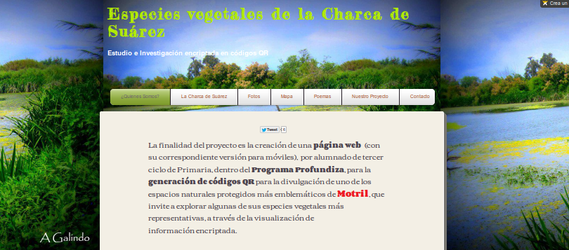 http://6nivel.wix.com/humedalcharcasuarez