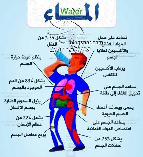 تأثير-الماء-على-جسم-الانسان
