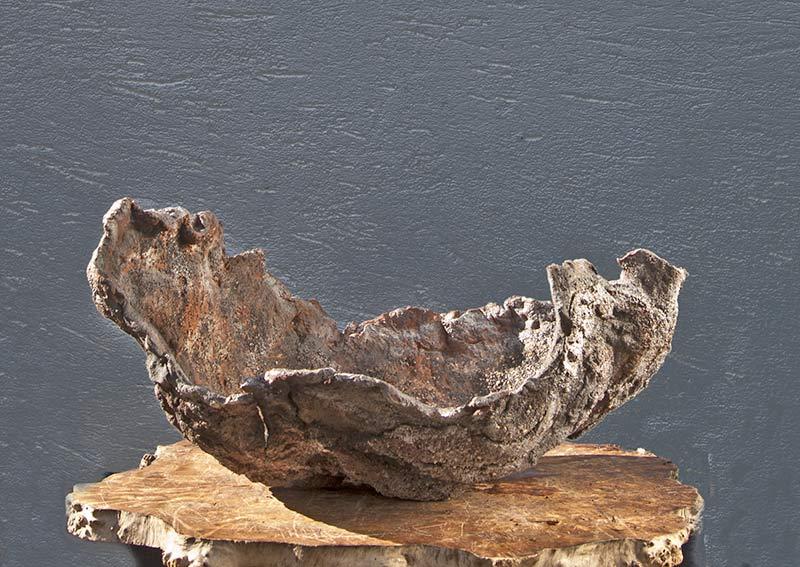 walter pall bonsai adventures new pots by william vlaanderen. Black Bedroom Furniture Sets. Home Design Ideas