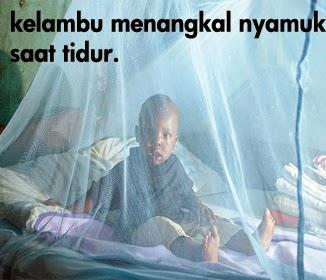 obat malaria