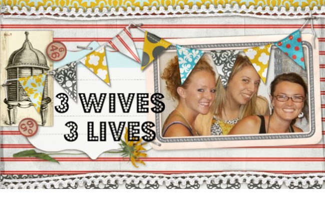 3 Wives 3 Lives