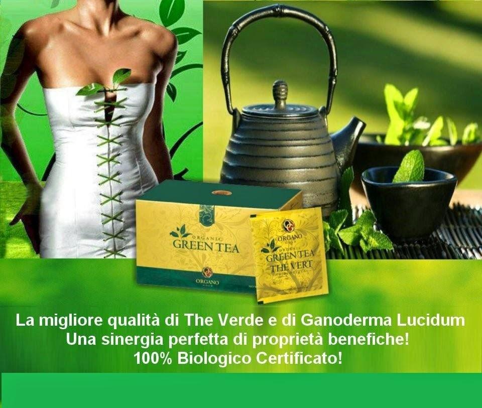 hướng dẫn sử dụng Organic Green Tea Organo Gold trà xanh linh chi