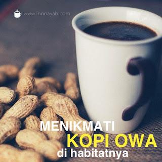 kopi owa khas petungkriyono, petungkriyono peklaongam, peklaongan, cara ke petungkriyono, wisata alam pekalongan, wisata alam, kopi, owa, satwa liar, java gibbon, owa jawa, satwa langka