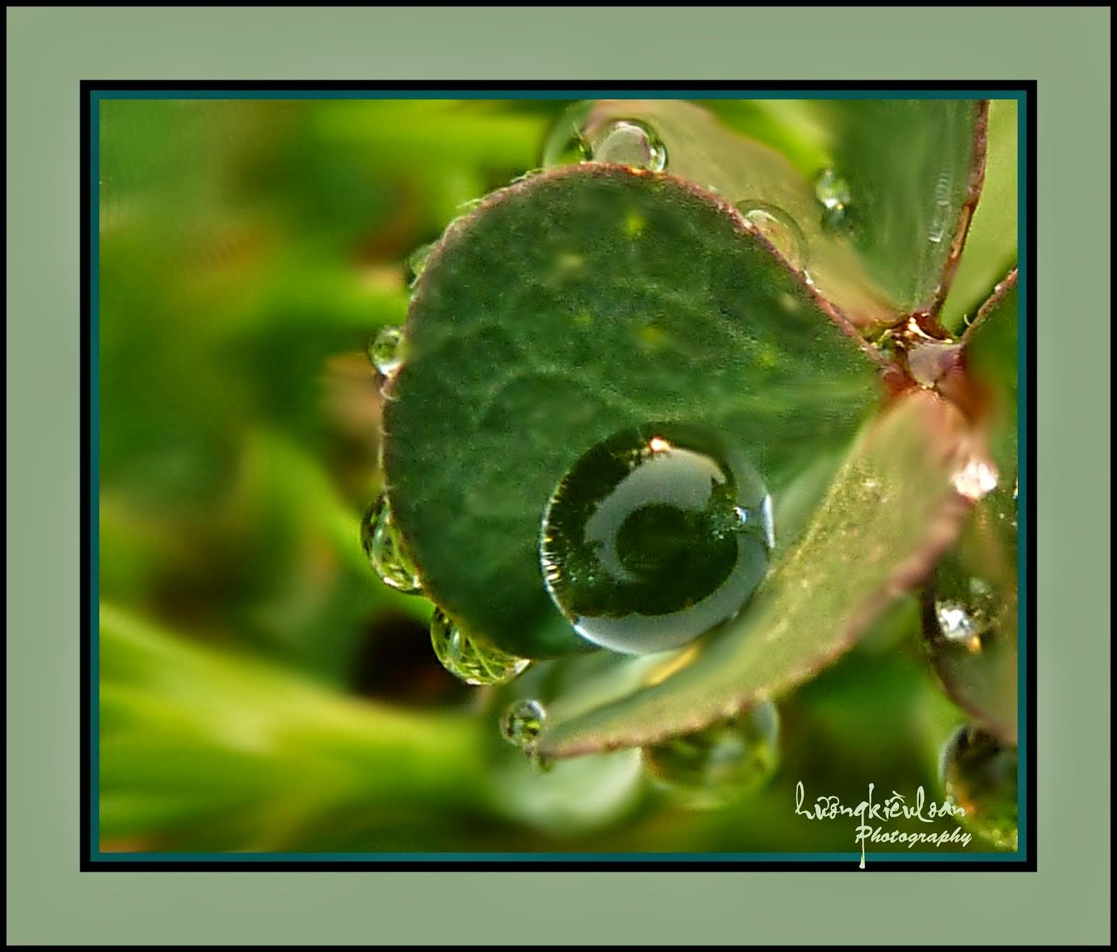 Giọt nước -Hương Kiều Loan