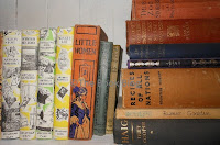 The-Books-in-the-Wild-bookcase-used-for-the-title-image.
