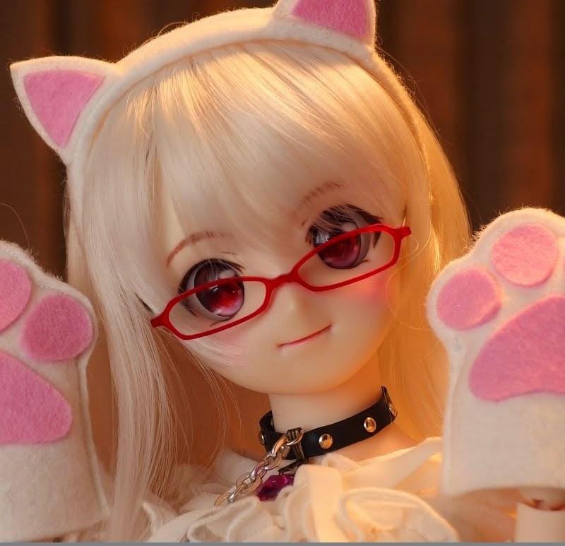 【ハンドルネーム「白猫」(しろねこ)】
