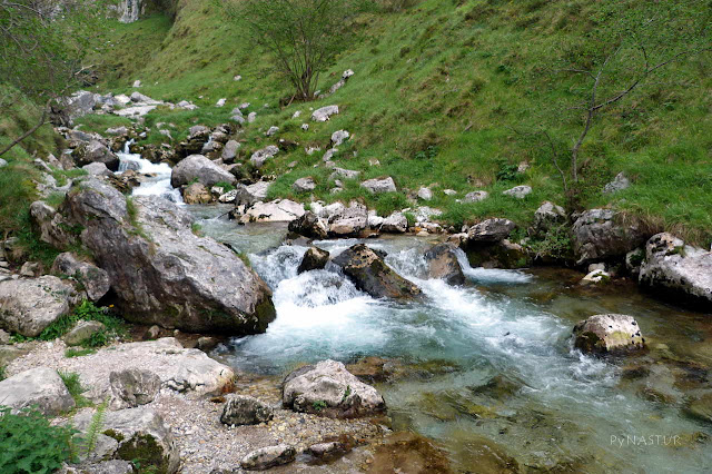 Río Texu o Bulnes