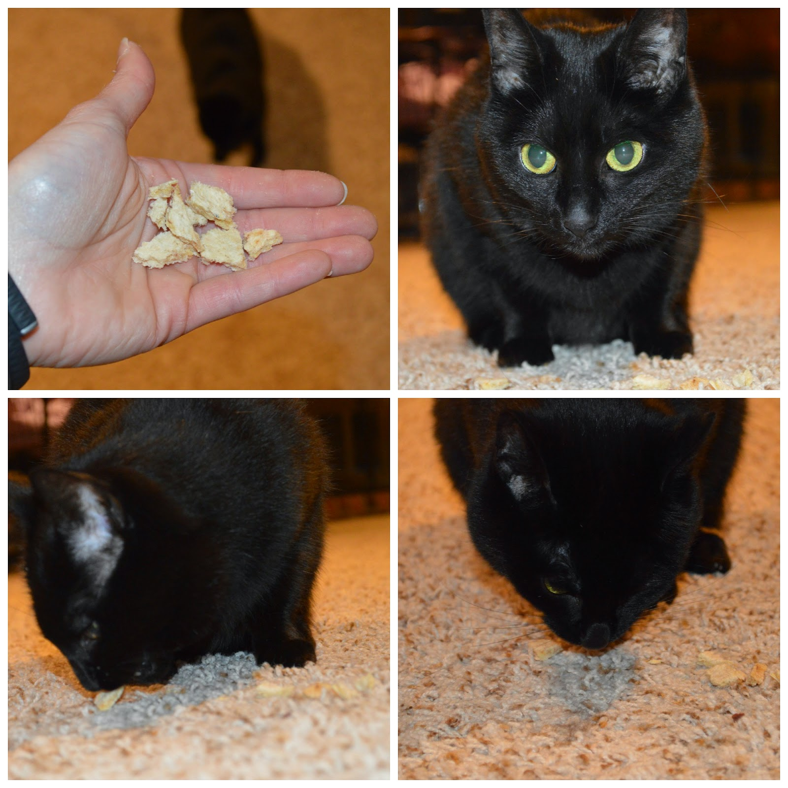 They Are Marketed As Such, And I Was Able To Easily Break Them Into  Appropriate Kitty Sized Treats. Miss Noelle Loved Them As Well!