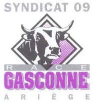 Syndicat Gascon 09