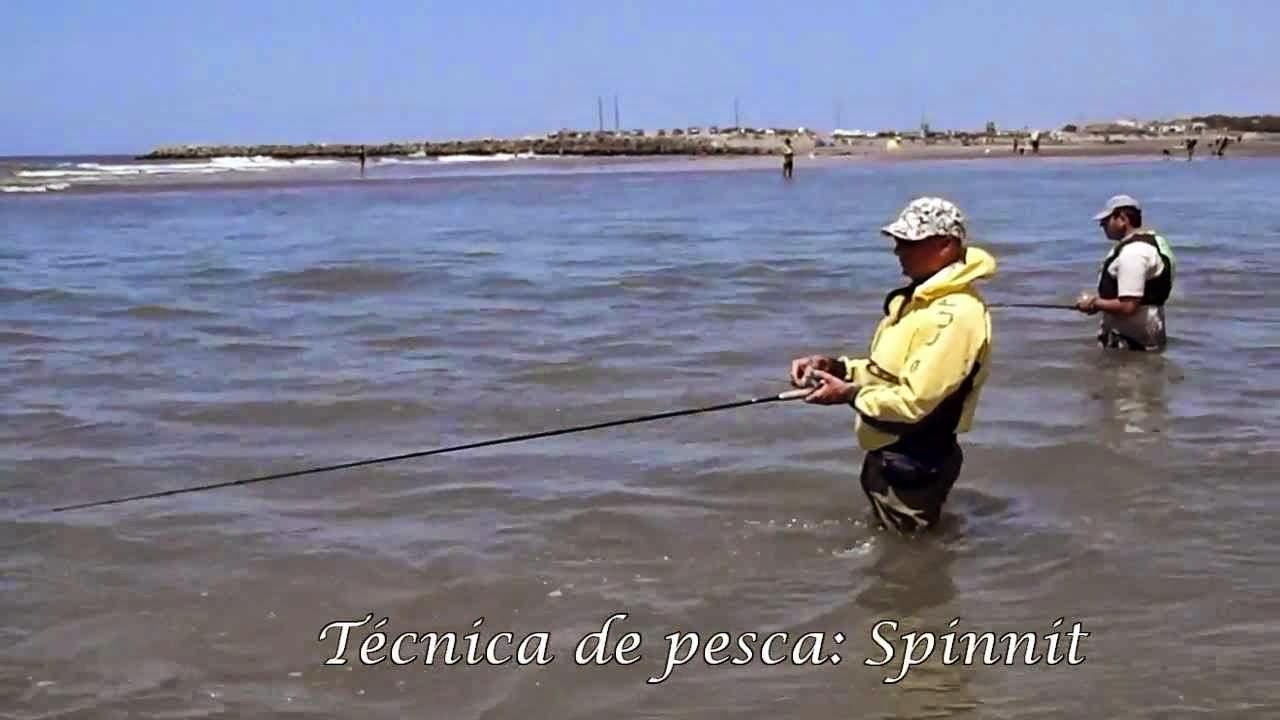 La pesca en la esfera de Tomsk el foro